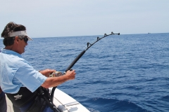 Fisherman - Fishing Rod